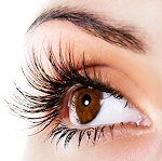 J Curl - Mascara Look .2mm thick .5 gram ~ Modern Lash