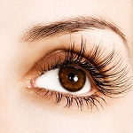D Curl - Natural Look .15mm thick 1.0 gram ~ Modern Lash
